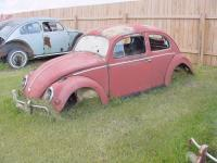 rusty ovals
