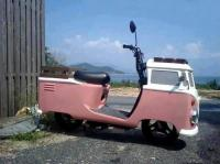 bus scooter