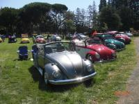 2013 Nor Cal Vintage Vw Porsche Treffen