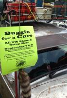 Buggin For A Cure 2013