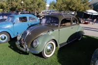 2-tone Green Split Window Beetle