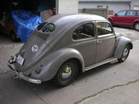 1949 Belgian Split
