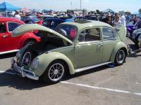 Bug-O-Rama #52