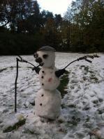 Vw snow man