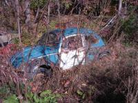 late Squareback and Bug rusting away