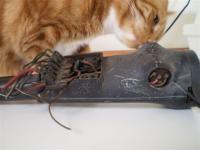 broken electrical switch Mr. Hanover feedback