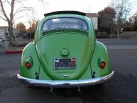 1959 Ragtop