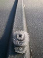 frozen thing