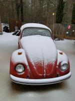 Snow bug