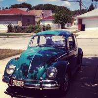 My Favorite Picture of the Beetle