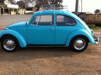 My 2nd 1967 Bug