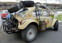 radical baja bugs