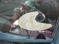 Old Vent Window Sticker