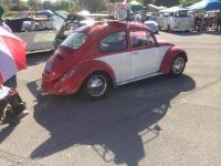 Two tone Bug