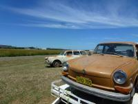 Australian 1972 TLE Fastback, barn find. (Honey brown)