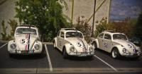 Herbie, Herbie, and Herbie at Taco Tree. Auburn, CA