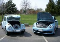 1970 and 2014 Beetles