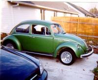 Green Bug 2