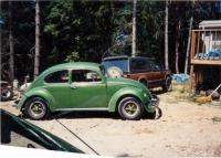 Old green bug side
