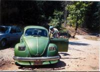 Old green bug front