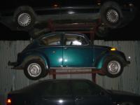 Hanging Beetles