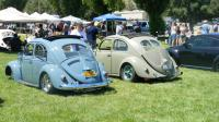 Split and oval Beetles at California Bug Bash 2014