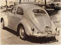 1981 Bug-In 27 - Orange County, California - October 25th, 1981