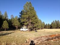 Camping in Northern Arizona at 7400 feet