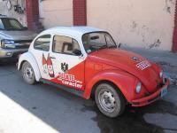 Tecate Bug