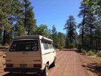 "Cruising the forest roads at 7500"" - Arizona"