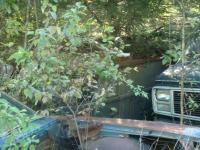 Roofless Panel - junkyard shots