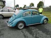 sweet 61 Bug