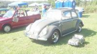 MY 63 Anthracite Beetle