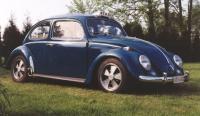 My 64 Beetle