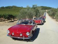 Type 3 Rally