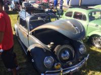 Original paint, ragtop, interior and engine.