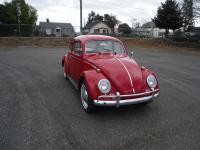 Red 1964 Beetle Restored