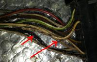 ECU Harness fried wires