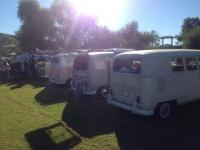 Yuma VWs on the river 2014