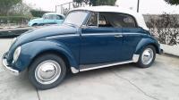 1960 euro convertible beetle