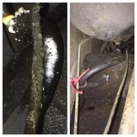 Fuel Line before and after