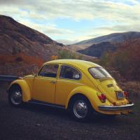 Yellow bug on vantage highway