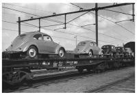 Split Beetles on a train for delivery