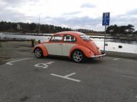 Bug -68