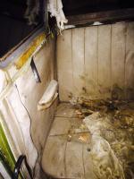Interior photos of 1955 standard bus that surfaced in Winnipeg.