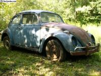 59 Euro Bug