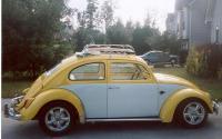 One sweet Bug