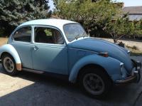 Sora-Iro 1973 beetle