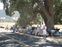 Scenes from the 2010 Solvang Rallye