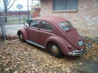 Our 1959 Bug